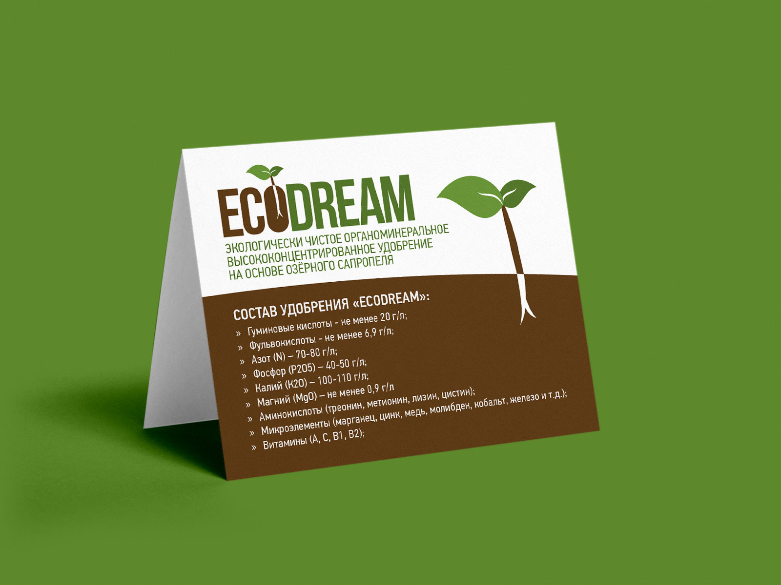 ecodream logotype brochure