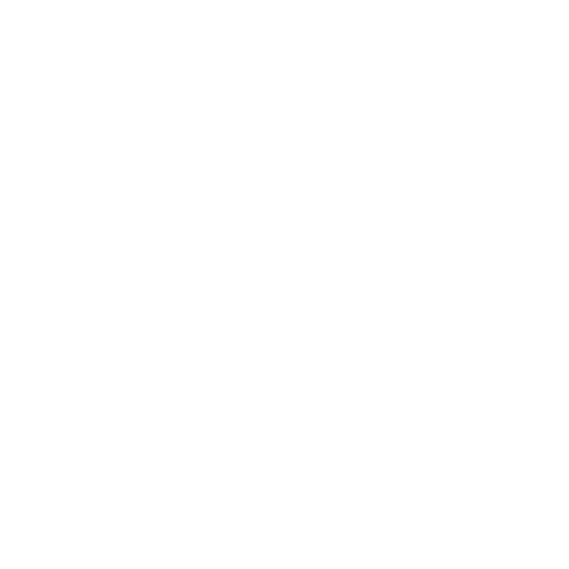 icons services camera