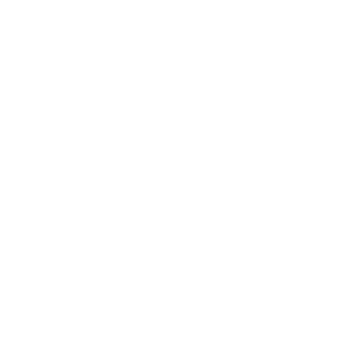 icons services css